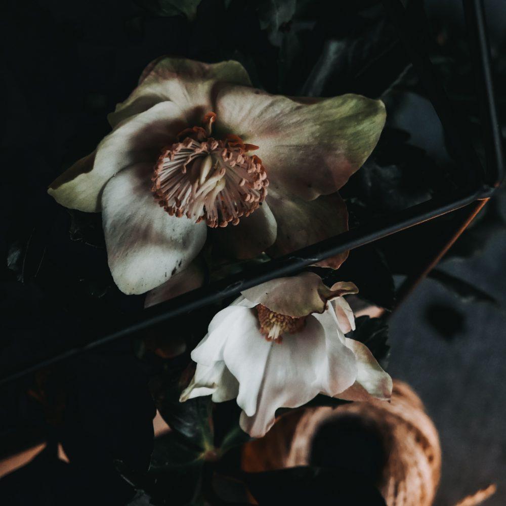 Aufnahmen von Jasmin Konrad